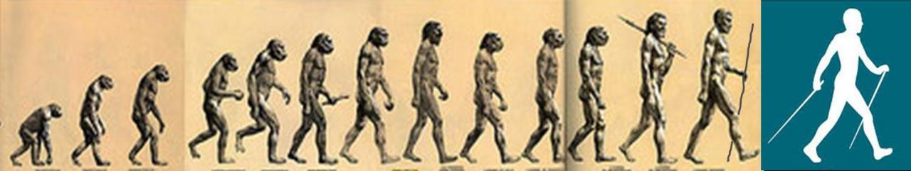 evolution-mn.jpg